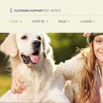 Siti internet E-commerce