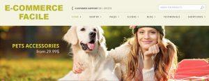 Siti internet E-commerce - testata