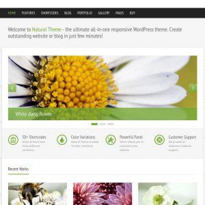 Grafica web - Stile grafico natural