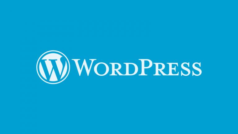 Classe personale immagine editor WordPress