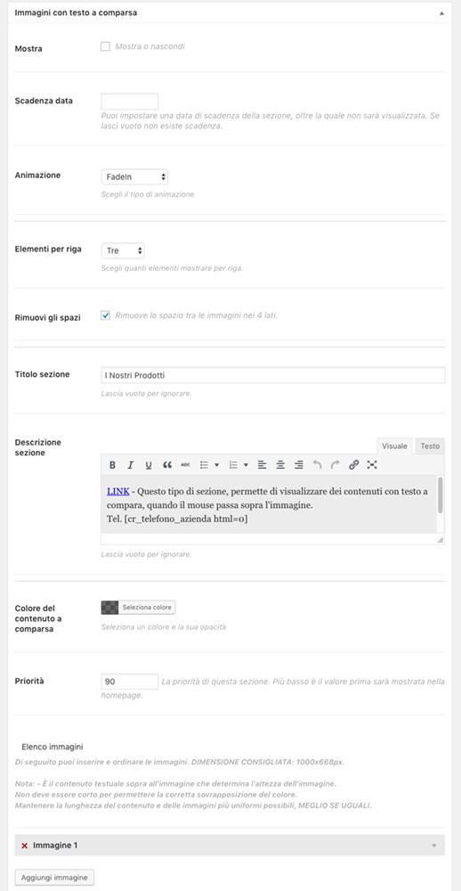 Amministrazione Home page sezione Immagini con testo a comparsa - pannelli chiusi